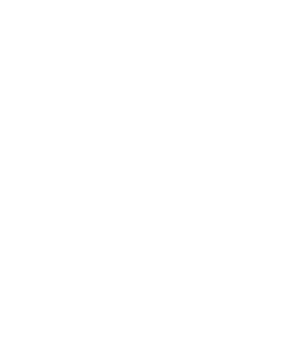 A1 Promotions